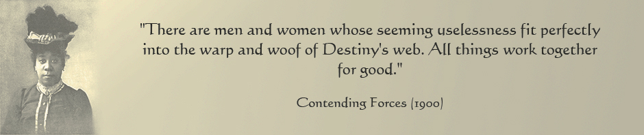 web header version 2  USELESSNESS DESTINY quotation